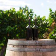 Weinflaschen auf Weinfass im Weingarten